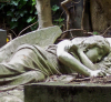 avatar_Sleeping_angel
