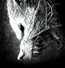 avatar_Cerber