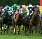 Race photo-ELITE-SM