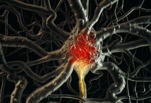 brain-cells-neurons-time_21689_600x450