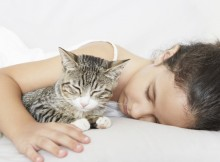 20121224-catster-tips-sleeping-5
