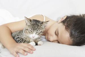 20121224-catster-tips-sleeping-5