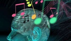 brain2-music