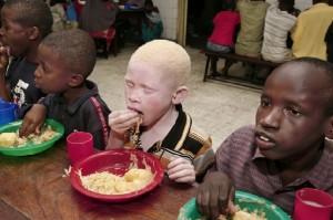 albinosai