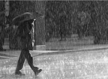 kvapas-po-lietaus