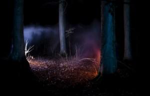 Paranormalus reiškinys – terminas, apibrėžiantis reiškinius, kuriems trūksta mokslinio paaiškinimo arba fenomenus, kurie nėra žinomi ir suprantami šiuolaikinio mokslo. Paranormaliais įvardijami tik tie reiškiniai, kurių egzistavimu abejojama dėl mokslinių įrodymų trūkumo, todėl tokie reiškiniai kaip tamsioji materija ir tamsioji energija nėra laikomi paranormaliais, nors kol kas yra sunkiai paaiškinami. Į paranormalius reiškinius dažnai įtraukiama telepatija, bendravimas su dvasiomis, vaiduokliai, telekinezė, NSO, kriptozoologinės būtybės, praeitų gyvenimų atsiminimai ir ksenoglosija.Apie paranormalius reiškinius dažnai spekuliuojama masinėje kultūroje, folklore, apie juos kuriamos šiuolaikinės legendos. Oficialusis mokslas paranormalius reiškinius paprastai atmeta kaip neegzistuojančius.
