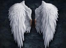 angelo-sparnai