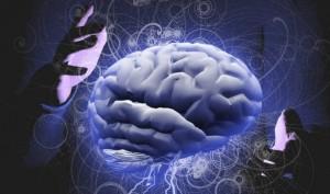 smegenys-minciu-kontrole