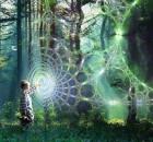holografinis-gyvenimas