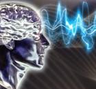 mirtis-smegenis
