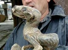 mumija-sachta