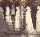 namas-siela-vaidenasi