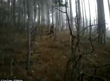 ukraina-sniego-zmgus
