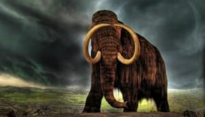 mamutas