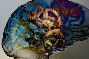 Brain-clockwork