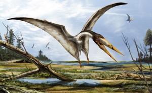 pterozauras