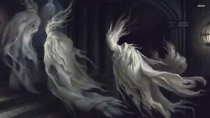 dvasios-sielos-veles