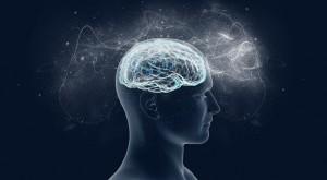 smegenys-atsiminimai
